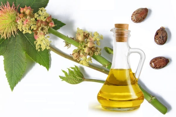 Multiple Health Benefits of Castor Oil