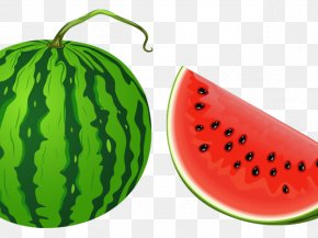 Watermelon in Summer Time